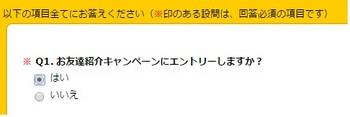 ハピタス 紹介エントリー画面.jpg
